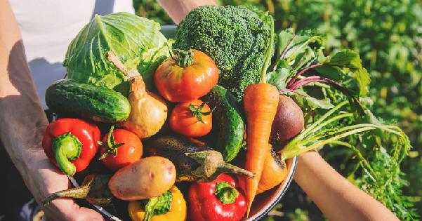 振泰檢驗-蔬果檢驗